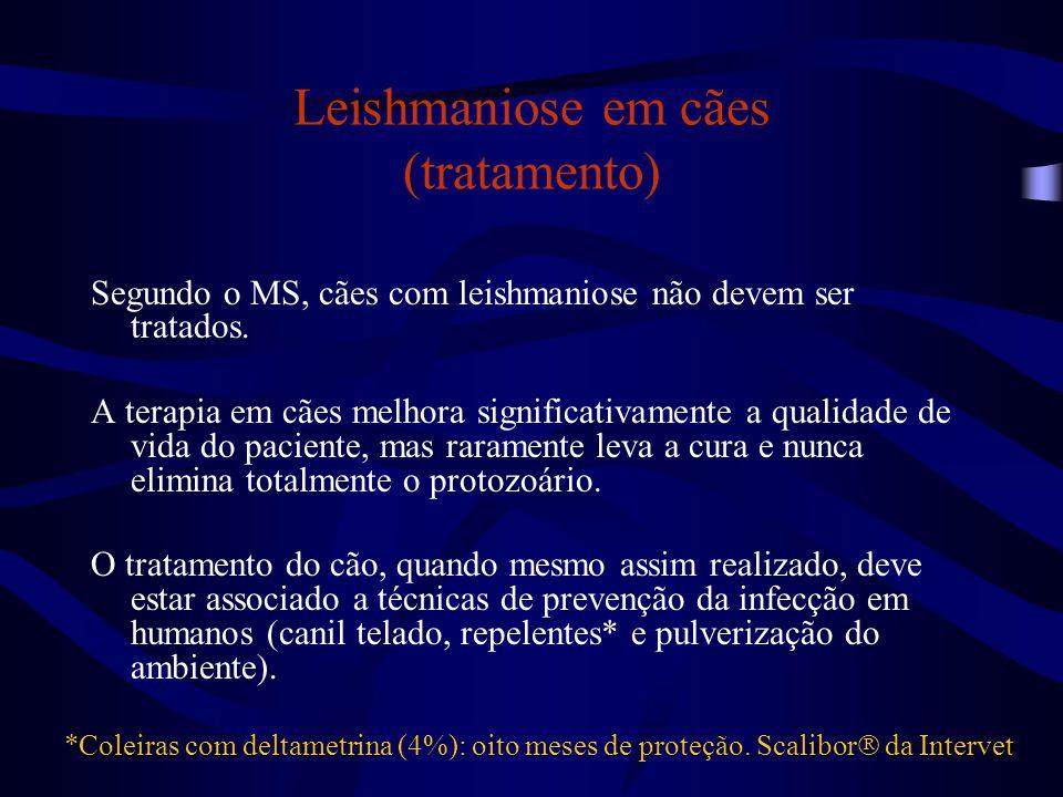 Leishmaniose em cães (tratamento) Segundo o MS, cães com leishmaniose não devem ser tratados. A terapia em cães melhora significativamente a qualidade
