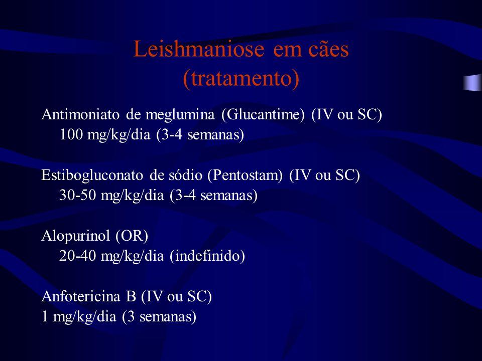 Leishmaniose em cães (tratamento) Antimoniato de meglumina (Glucantime) (IV ou SC) 100 mg/kg/dia (3-4 semanas) Estibogluconato de sódio (Pentostam) (I