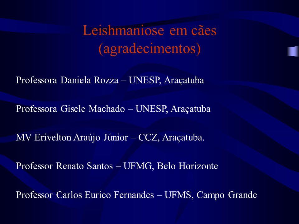 Leishmaniose em cães (agradecimentos) Professora Daniela Rozza – UNESP, Araçatuba Professora Gisele Machado – UNESP, Araçatuba MV Erivelton Araújo Jún