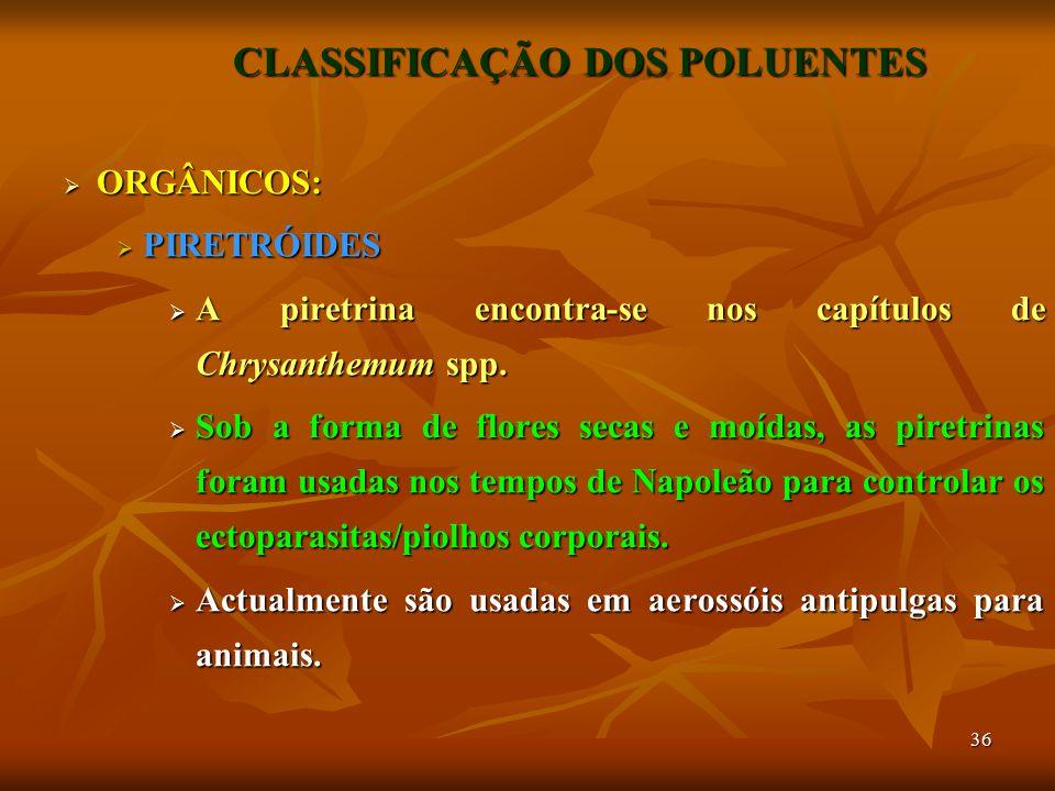 36 CLASSIFICAÇÃO DOS POLUENTES  ORGÂNICOS:  PIRETRÓIDES  A piretrina encontra-se nos capítulos de Chrysanthemum spp.  Sob a forma de flores secas