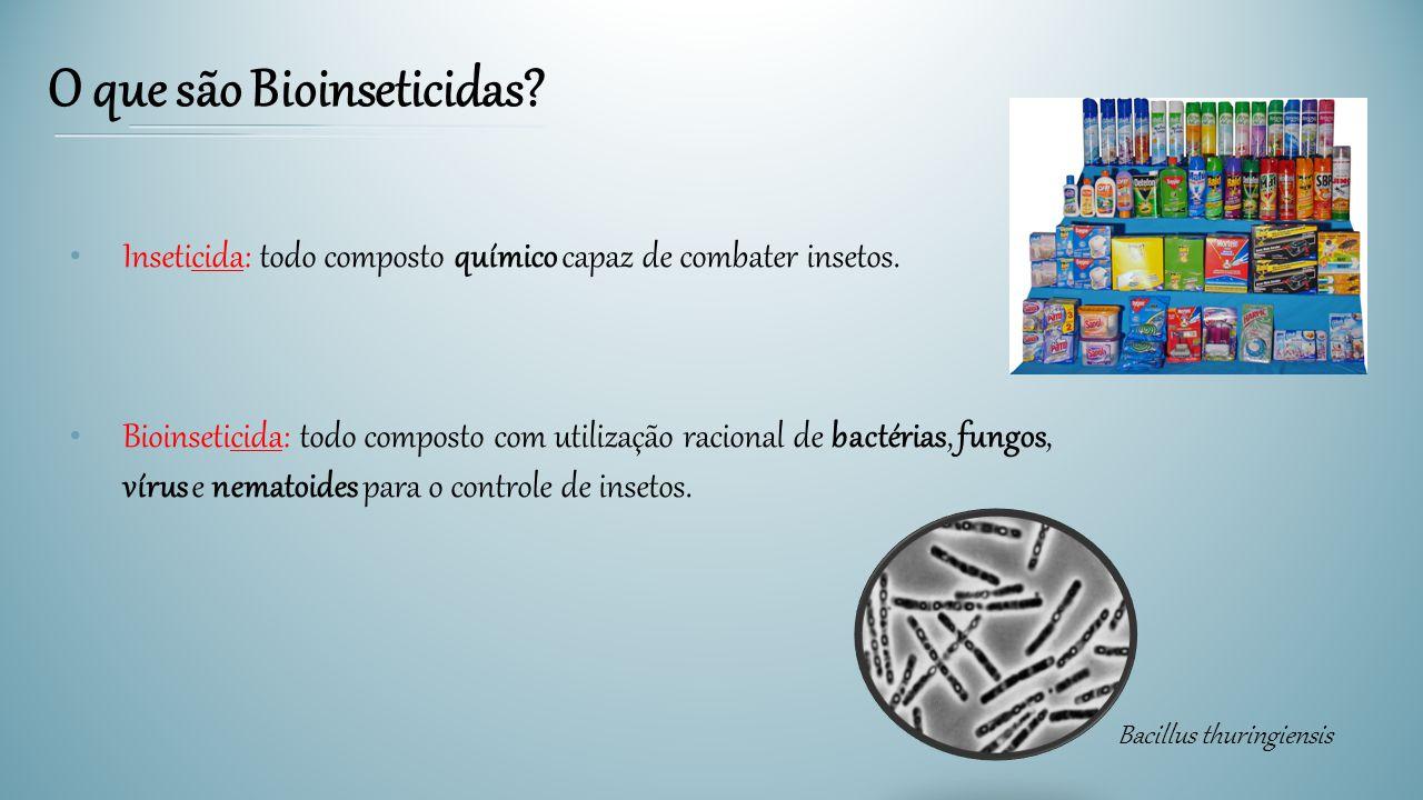 O que são Bioinseticidas? Inseticida: todo composto químico capaz de combater insetos. Bioinseticida: todo composto com utilização racional de bactéri