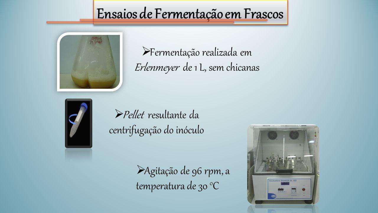 Ensaios de Fermentação em Frascos  Fermentação realizada em Erlenmeyer de 1 L, sem chicanas  Pellet resultante da centrifugação do inóculo  Agitaçã