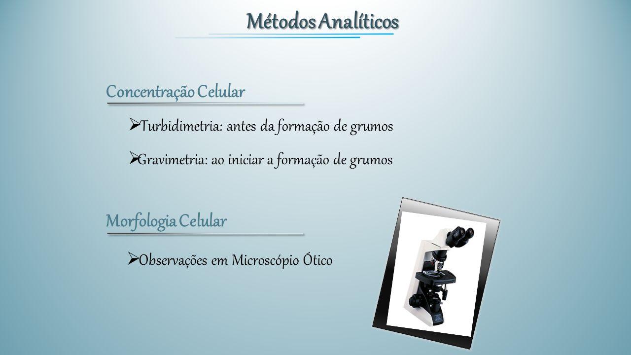 Métodos Analíticos Concentração Celular  Turbidimetria: antes da formação de grumos  Gravimetria: ao iniciar a formação de grumos Morfologia Celular