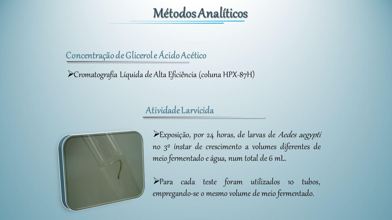 Métodos Analíticos Concentração de Glicerol e Ácido Acético  Cromatografia Líquida de Alta Eficiência (coluna HPX-87H) Atividade Larvicida  Exposiçã