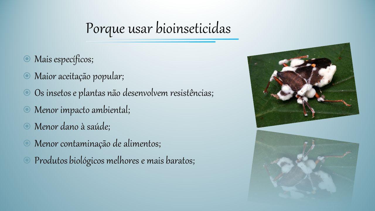 Porque usar bioinseticidas  Mais específicos;  Maior aceitação popular;  Os insetos e plantas não desenvolvem resistências;  Menor impacto ambient