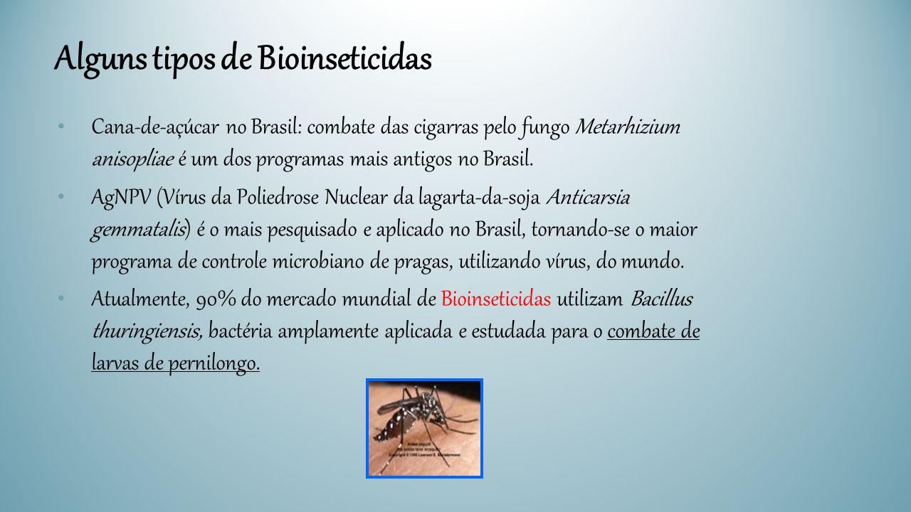 Cana-de-açúcar no Brasil: combate das cigarras pelo fungo Metarhizium anisopliae é um dos programas mais antigos no Brasil. AgNPV (Vírus da Poliedrose