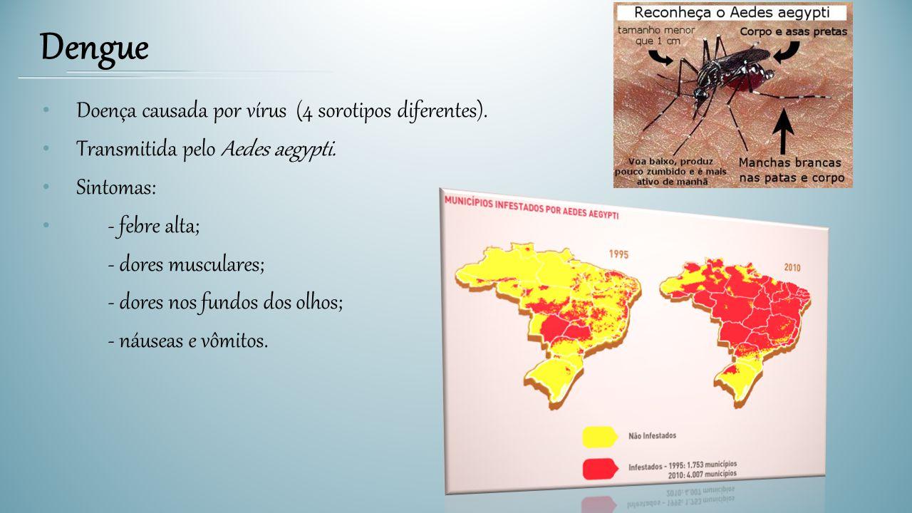 Doença causada por vírus (4 sorotipos diferentes). Transmitida pelo Aedes aegypti. Sintomas: - febre alta; - dores musculares; - dores nos fundos dos