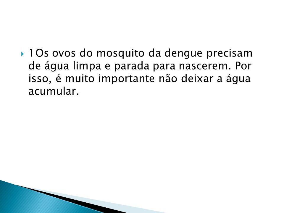  1Os ovos do mosquito da dengue precisam de água limpa e parada para nascerem. Por isso, é muito importante não deixar a água acumular.