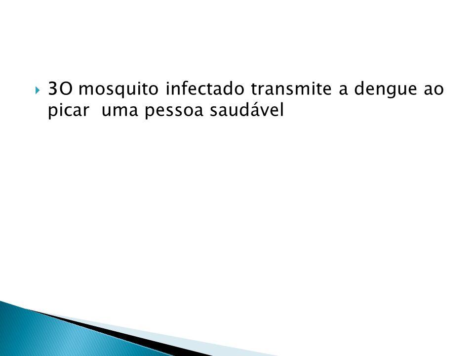  3O mosquito infectado transmite a dengue ao picar uma pessoa saudável