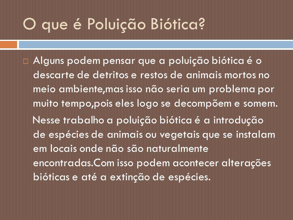 O que é Poluição Biótica?  Alguns podem pensar que a poluição biótica é o descarte de detritos e restos de animais mortos no meio ambiente,mas isso n