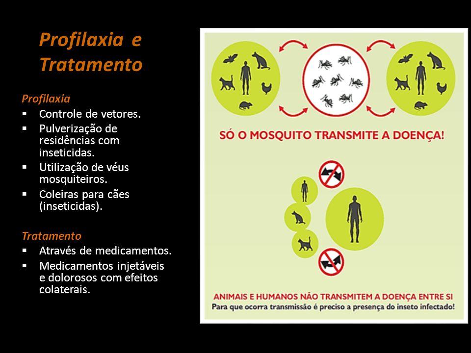 Profilaxia e Tratamento Profilaxia  Controle de vetores.  Pulverização de residências com inseticidas.  Utilização de véus mosquiteiros.  Coleiras