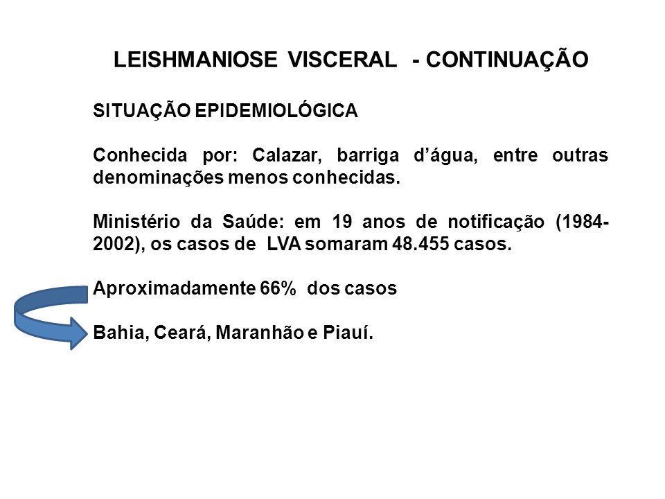 LEISHMANIOSE VISCERAL - CONTINUAÇÃO SITUAÇÃO EPIDEMIOLÓGICA Conhecida por: Calazar, barriga d'água, entre outras denominações menos conhecidas. Minist