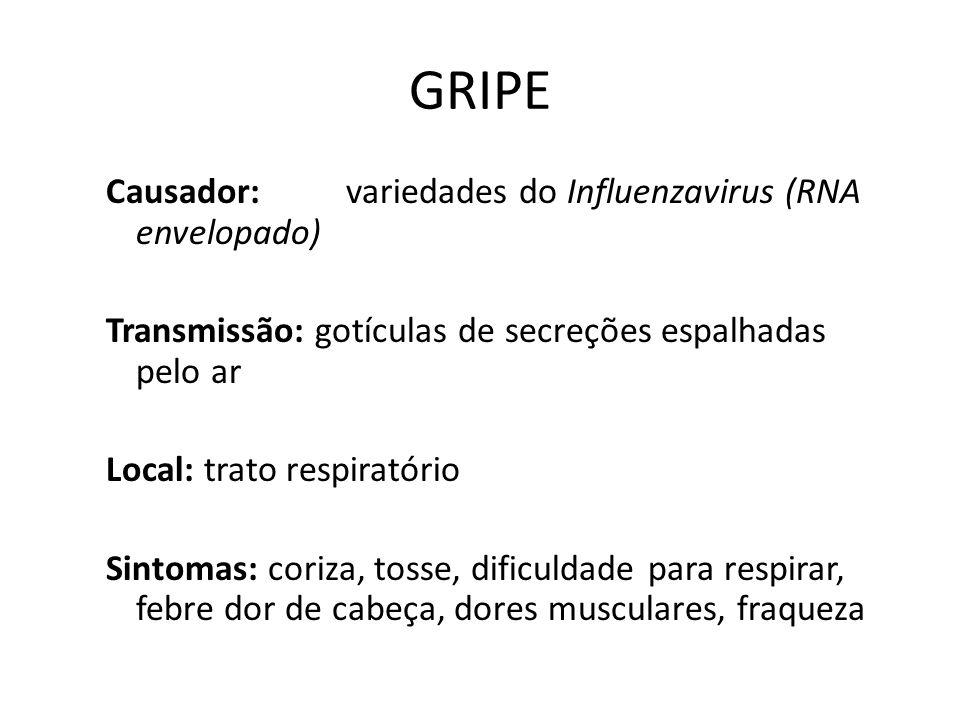 GRIPE Causador:variedades do Influenzavirus (RNA envelopado) Transmissão: gotículas de secreções espalhadas pelo ar Local: trato respiratório Sintomas