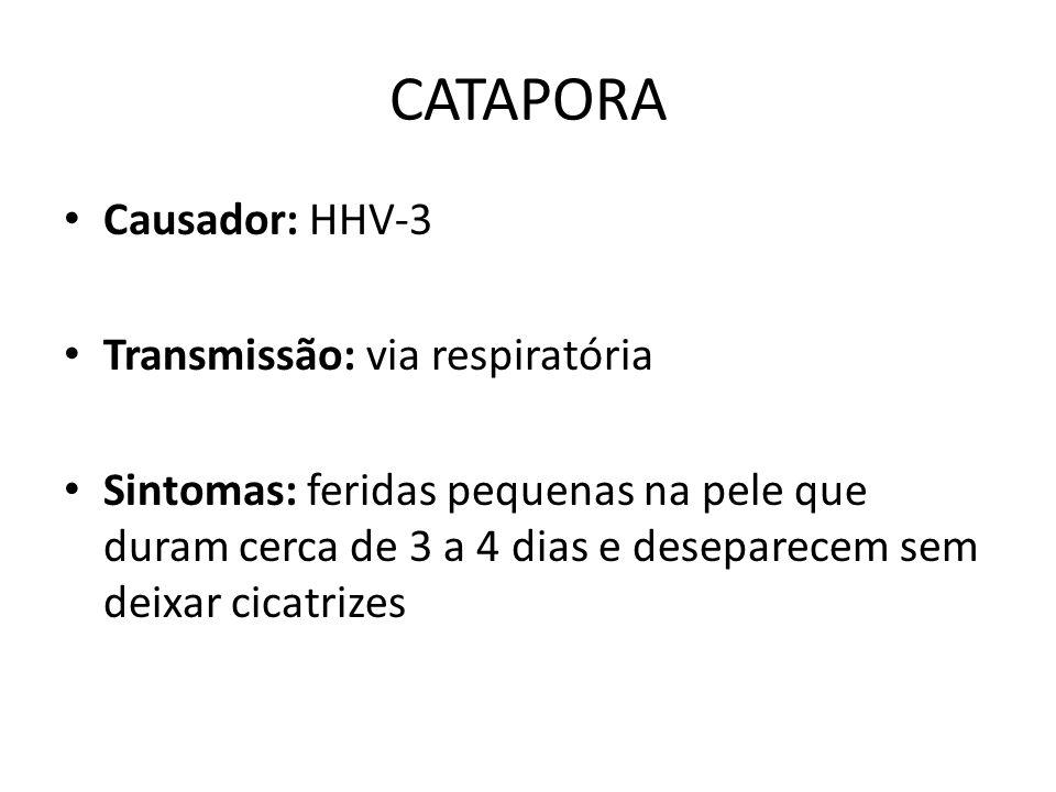 CATAPORA Causador: HHV-3 Transmissão: via respiratória Sintomas: feridas pequenas na pele que duram cerca de 3 a 4 dias e deseparecem sem deixar cicat