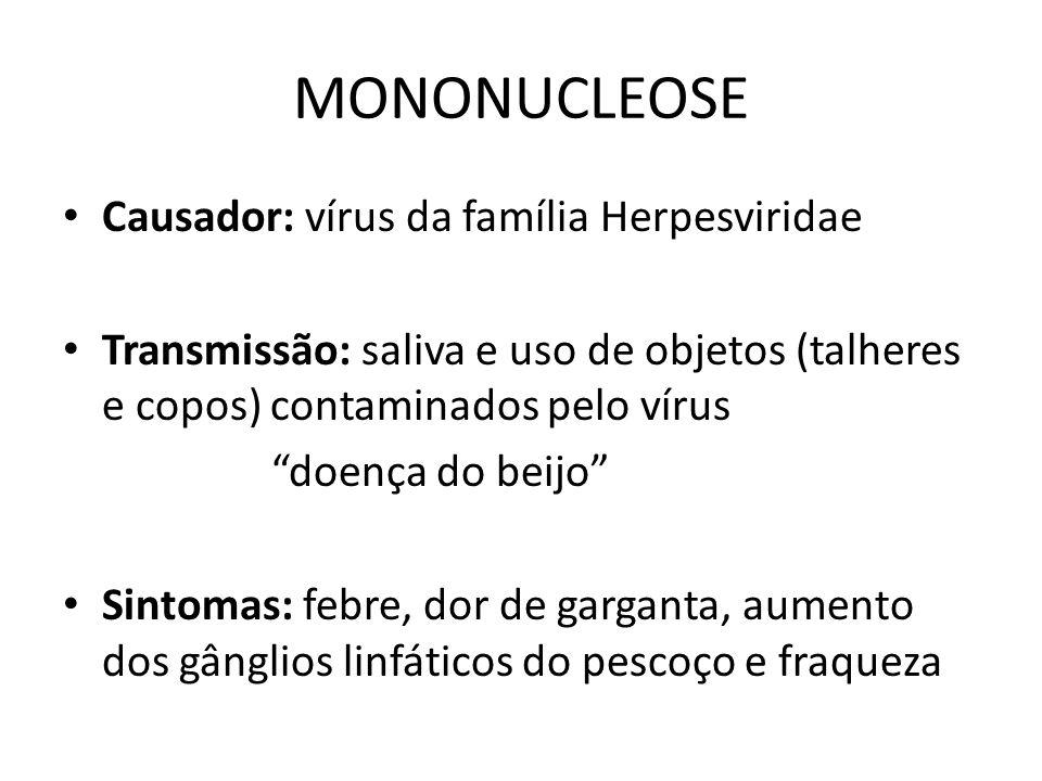 """MONONUCLEOSE Causador: vírus da família Herpesviridae Transmissão: saliva e uso de objetos (talheres e copos) contaminados pelo vírus """"doença do beijo"""