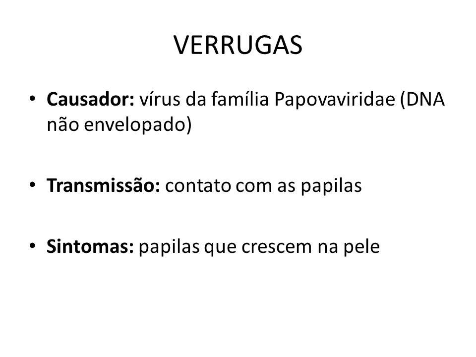 VERRUGAS Causador: vírus da família Papovaviridae (DNA não envelopado) Transmissão: contato com as papilas Sintomas: papilas que crescem na pele