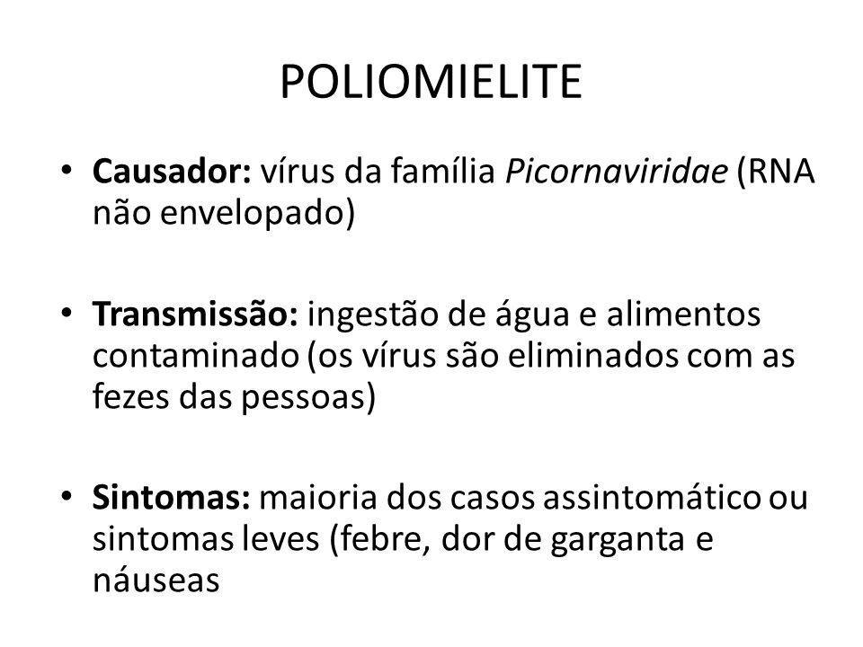POLIOMIELITE Causador: vírus da família Picornaviridae (RNA não envelopado) Transmissão: ingestão de água e alimentos contaminado (os vírus são elimin