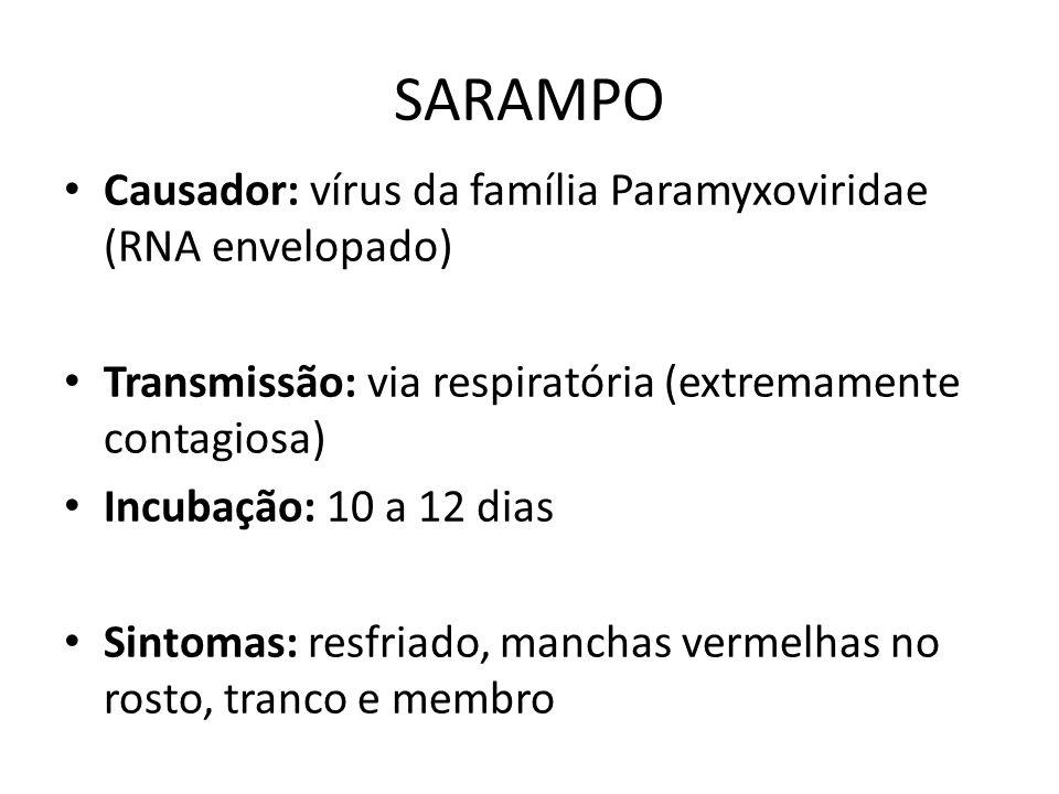 SARAMPO Causador: vírus da família Paramyxoviridae (RNA envelopado) Transmissão: via respiratória (extremamente contagiosa) Incubação: 10 a 12 dias Si