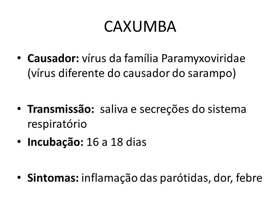CAXUMBA Causador: vírus da família Paramyxoviridae (vírus diferente do causador do sarampo) Transmissão: saliva e secreções do sistema respiratório In