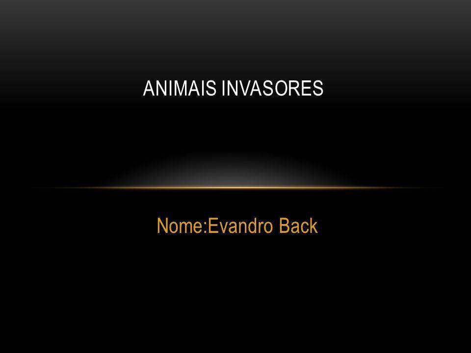 Nome:Evandro Back ANIMAIS INVASORES