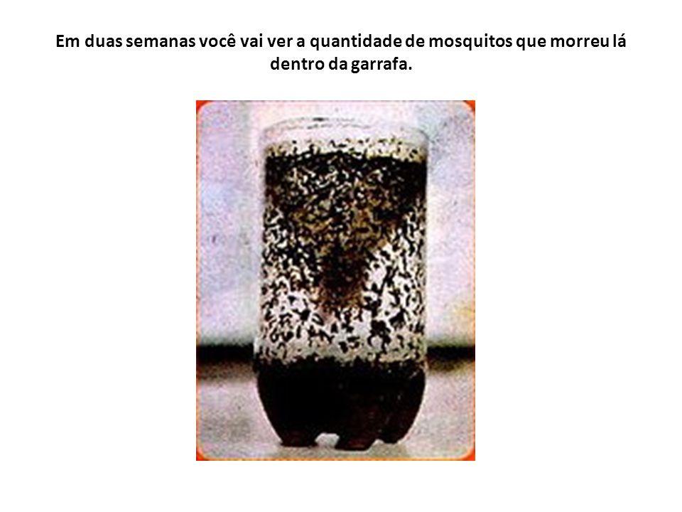Além da limpeza de suas casas, locais de reprodução do mosquito, podemos utilizar esse método muito útil em escolas, creches, hospitais e residências.