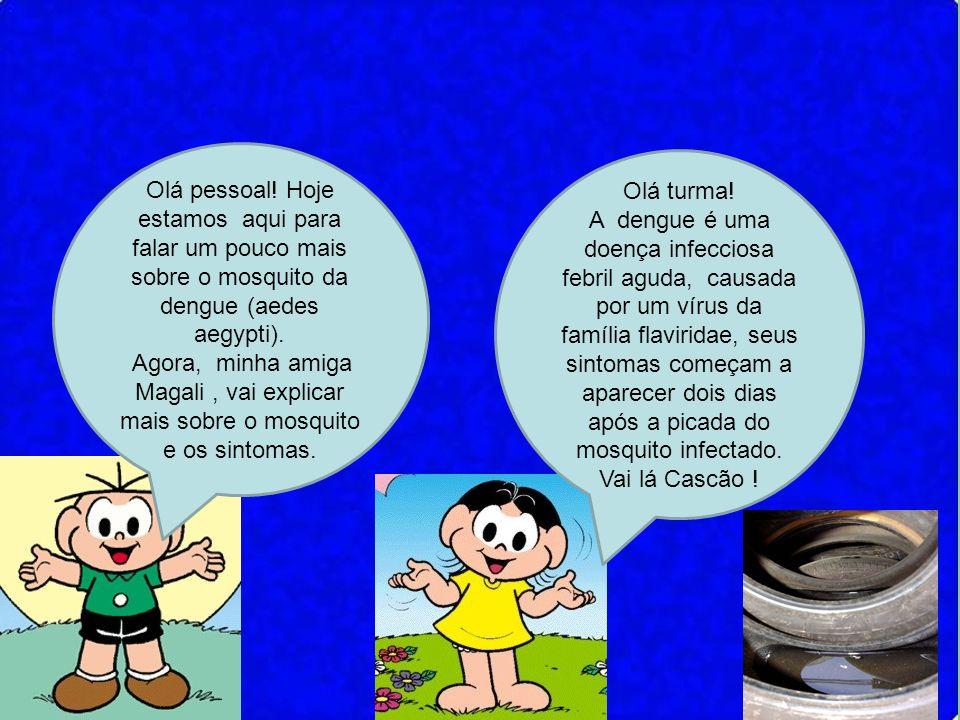 Olá pessoal! Hoje estamos aqui para falar um pouco mais sobre o mosquito da dengue (aedes aegypti). Agora, minha amiga Magali, vai explicar mais sobre