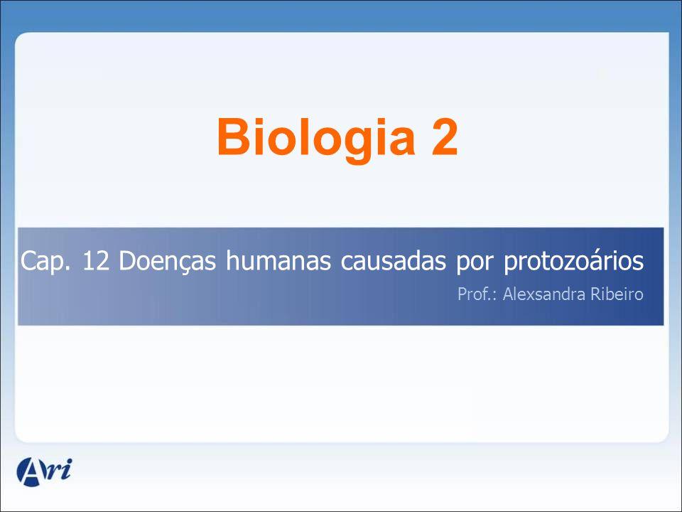 Biologia 2 Cap. 12 Doenças humanas causadas por protozoários Prof.: Alexsandra Ribeiro