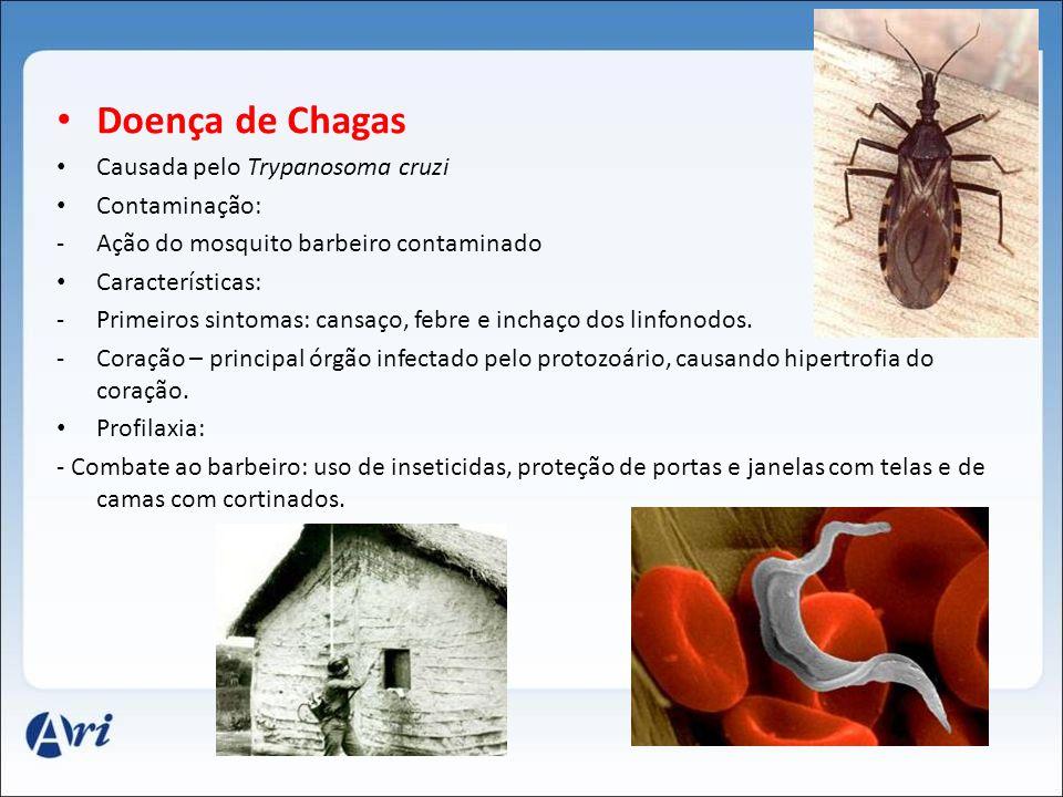 Doença de Chagas Causada pelo Trypanosoma cruzi Contaminação: -Ação do mosquito barbeiro contaminado Características: -Primeiros sintomas: cansaço, fe