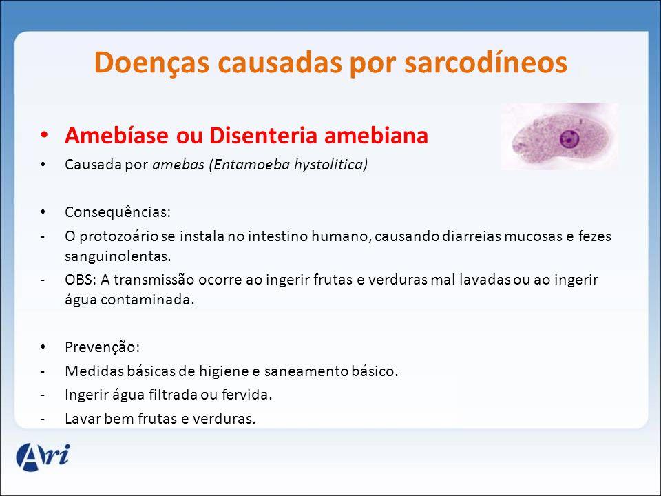 Doenças causadas por sarcodíneos Amebíase ou Disenteria amebiana Causada por amebas (Entamoeba hystolitica) Consequências: -O protozoário se instala n