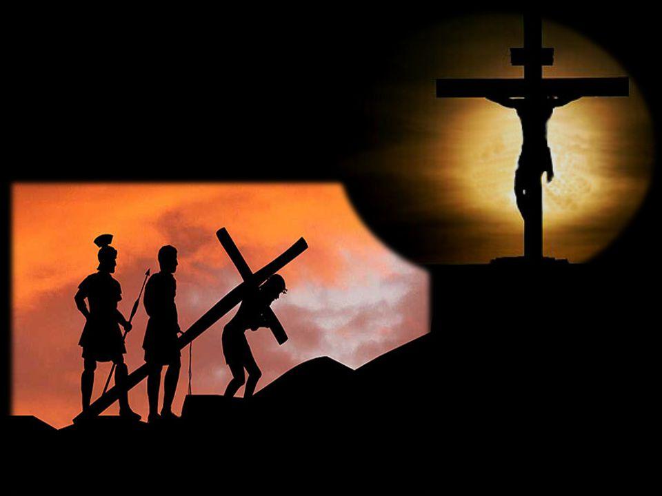 Deus é Soberano Tua é, SENHOR, a magnificência, e o poder, e a honra, e a vitória, e a majestade; porque teu é tudo quanto há nos céus e na terra; teu é, SENHOR, o reino, e tu te exaltaste por cabeça sobre todos.