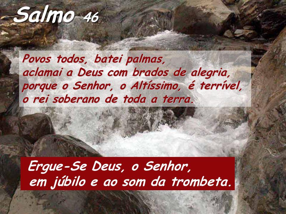 Salmo 46 Povos todos, batei palmas, aclamai a Deus com brados de alegria, porque o Senhor, o Altíssimo, é terrível, o rei soberano de toda a terra.