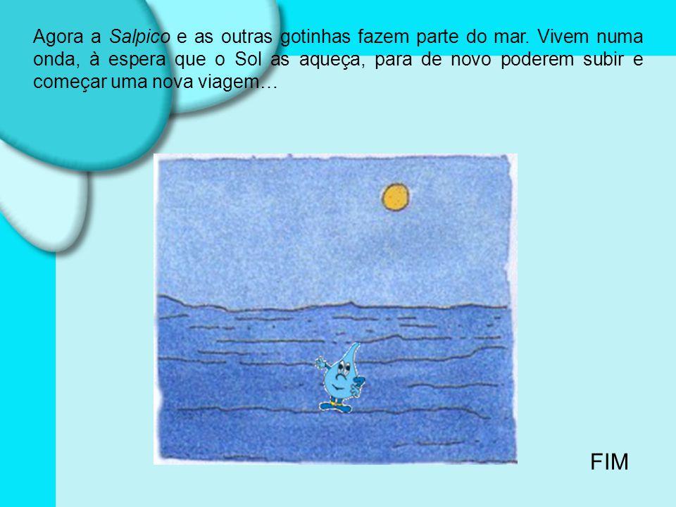 Agora a Salpico e as outras gotinhas fazem parte do mar.