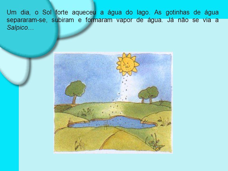 Um dia, o Sol forte aqueceu a água do lago.