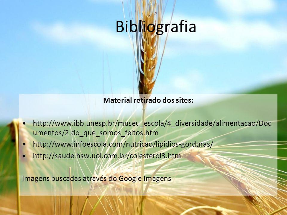 Bibliografia Material retirado dos sites: http://www.ibb.unesp.br/museu_escola/4_diversidade/alimentacao/Doc umentos/2.do_que_somos_feitos.htm http://