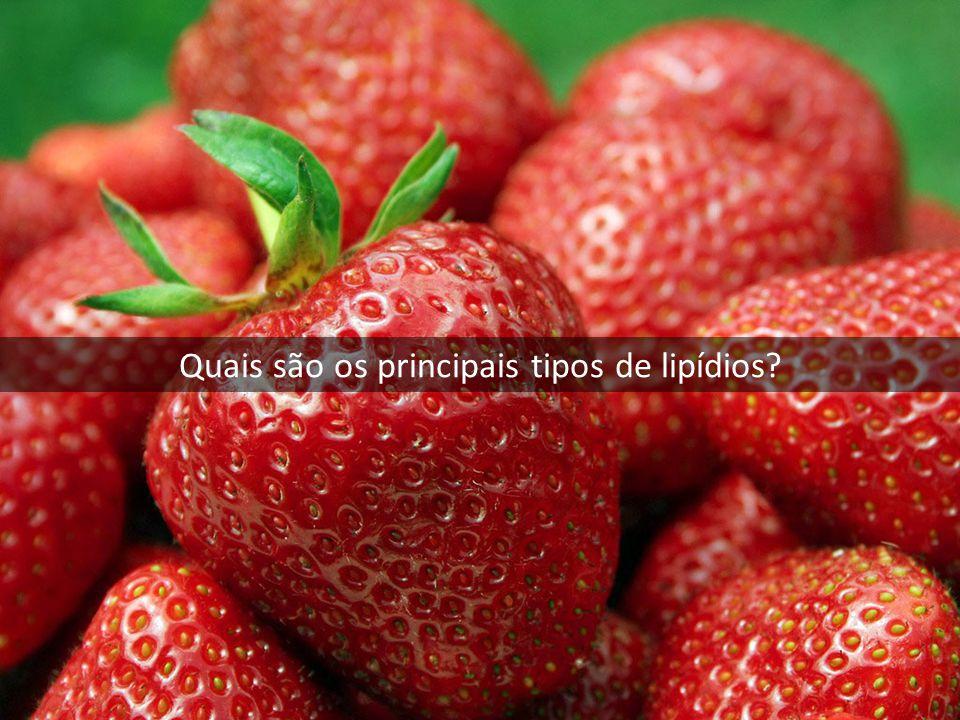 Quais são os principais tipos de lipídios?