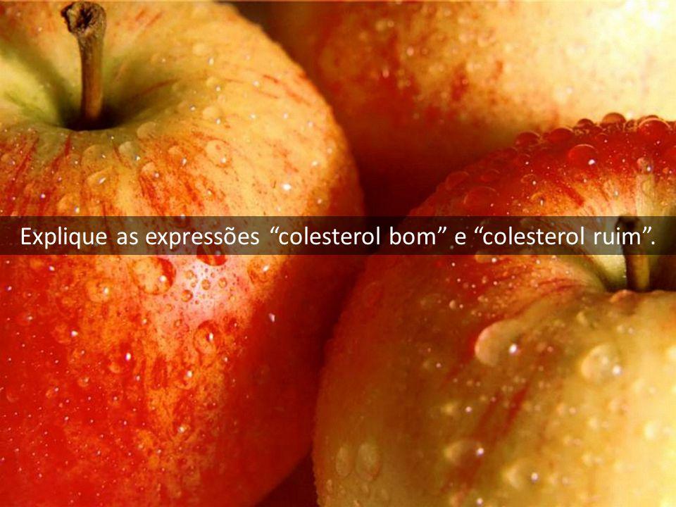"""Explique as expressões """"colesterol bom"""" e """"colesterol ruim""""."""