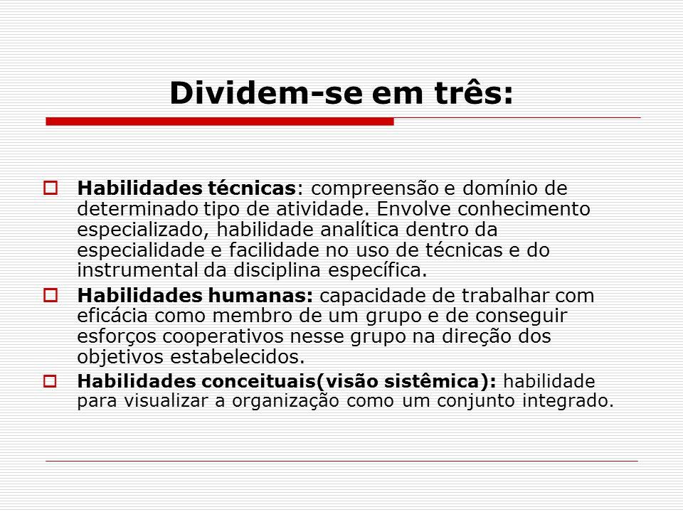 Dividem-se em três:  Habilidades técnicas: compreensão e domínio de determinado tipo de atividade.