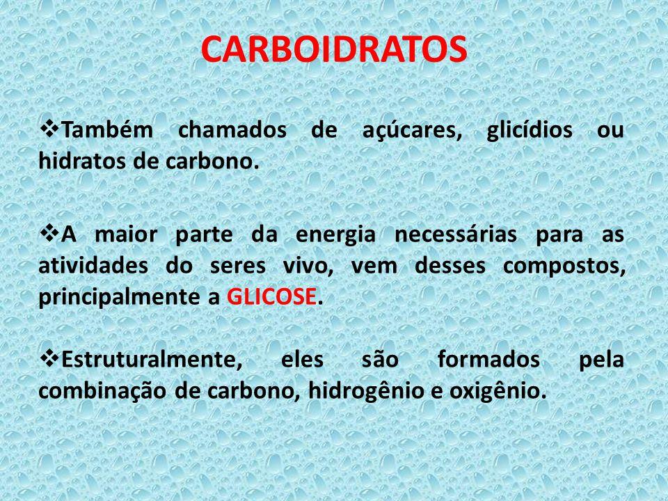 CARBOIDRATOS  Também chamados de açúcares, glicídios ou hidratos de carbono.  A maior parte da energia necessárias para as atividades do seres vivo,