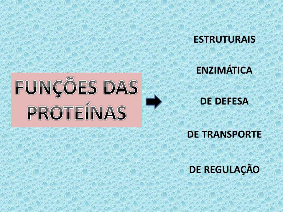 ESTRUTURAIS ENZIMÁTICA DE DEFESA DE TRANSPORTE DE REGULAÇÃO