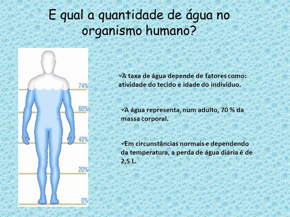 E qual a quantidade de água no organismo humano? A taxa de água depende de fatores como: atividade do tecido e idade do indivíduo. A água representa,