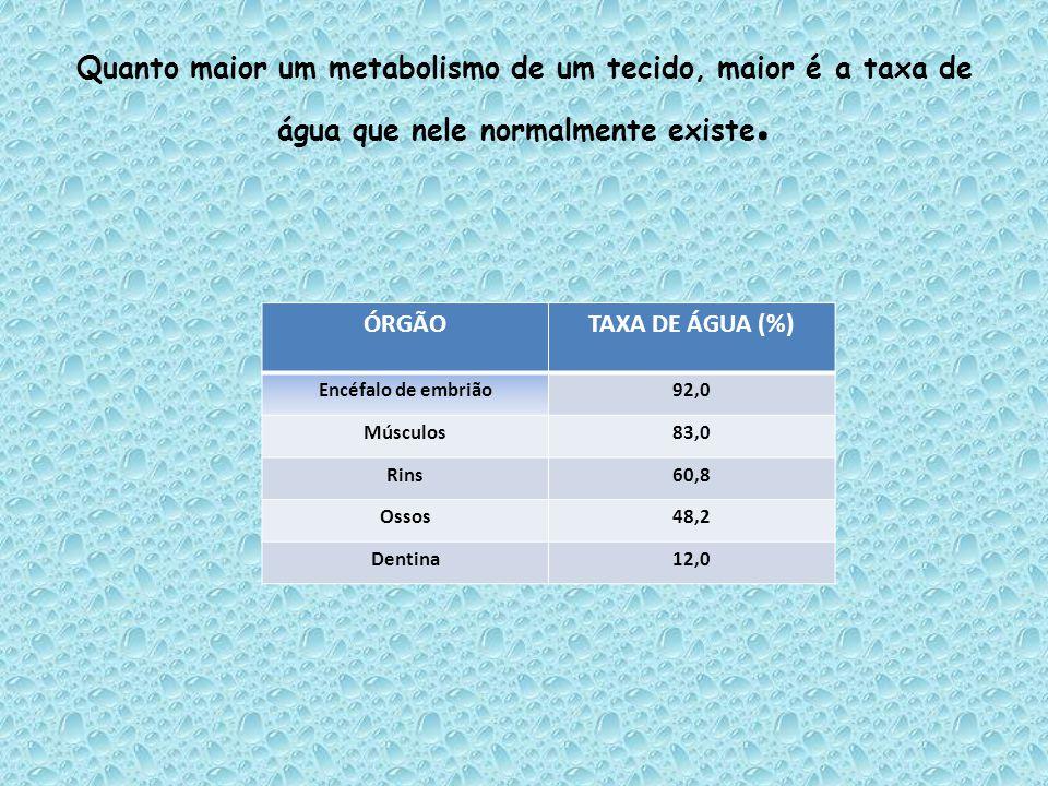 Quanto maior um metabolismo de um tecido, maior é a taxa de água que nele normalmente existe. ÓRGÃOTAXA DE ÁGUA (%) Encéfalo de embrião92,0 Músculos83