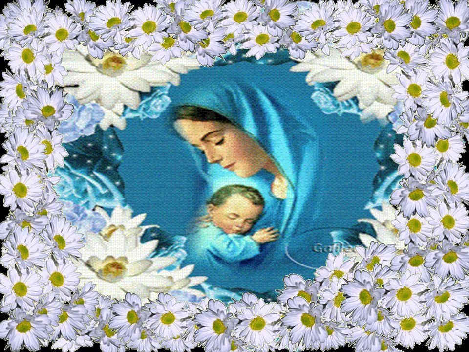 O cântico de Maria descreve o programa que Deus tinha começado a realizar desde o começo, que ele prosseguiu em Maria e que cumpre agora na Igreja, pa