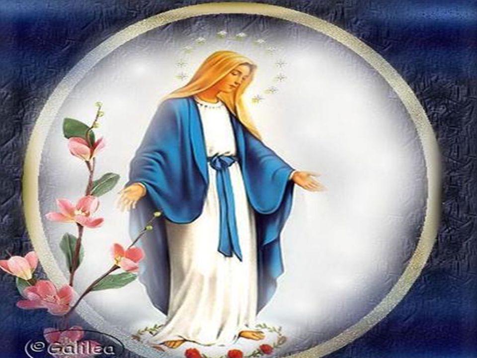 Os humildes são aqueles que crêem no cumprimento das palavras de Deus e se põem a caminho, aqueles que acolhem até ao mais íntimo do seu ser a Vida no