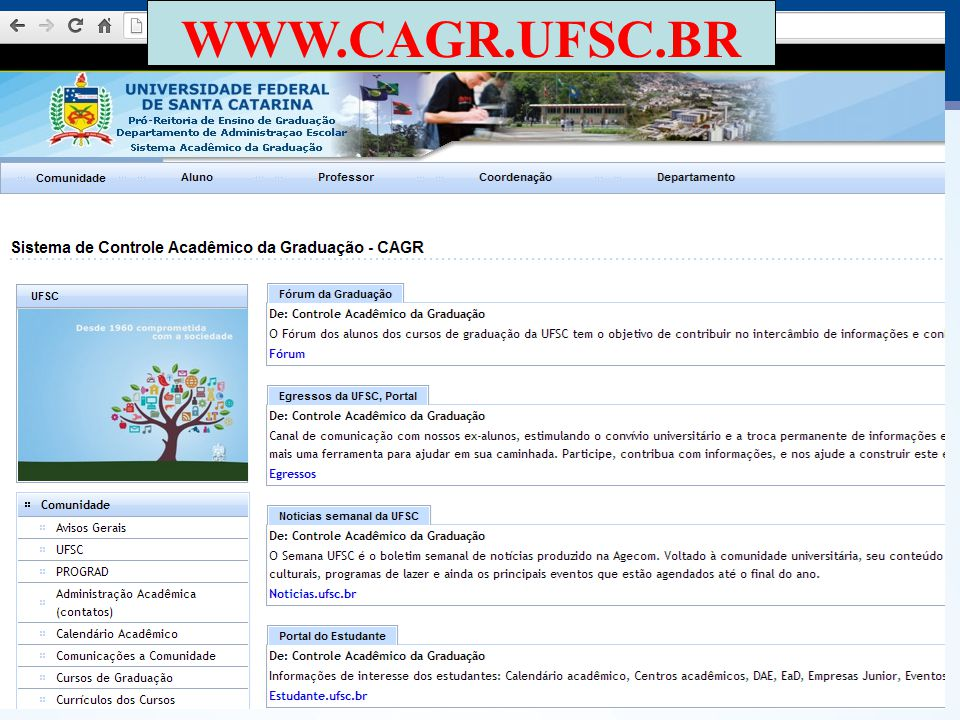 ATENÇÃO: Os currículos dos cursos indicam a necessidade de optativas e atividades complementares.