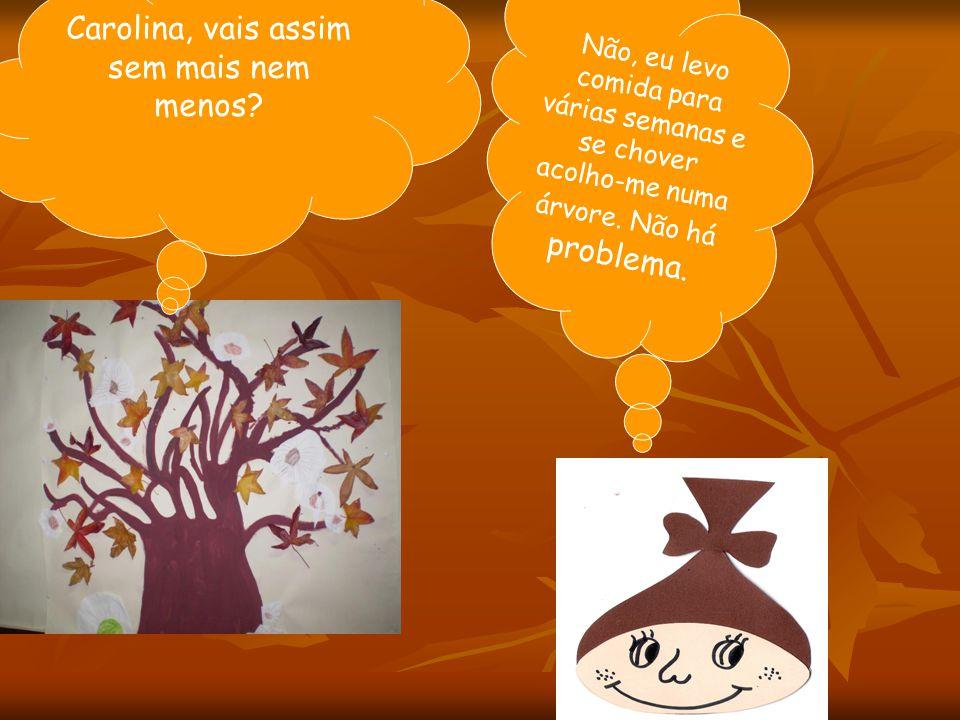 AUTORA: BEATRIZ MELO (1º ciclo de Paus) Ilustrações: alunos do Jardim de Infância de Paus (pesquisa na Net)