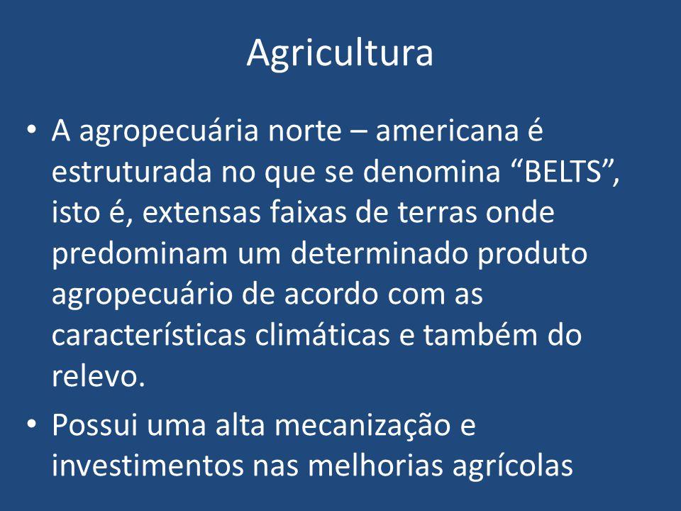 Agricultura A agropecuária norte – americana é estruturada no que se denomina BELTS , isto é, extensas faixas de terras onde predominam um determinado produto agropecuário de acordo com as características climáticas e também do relevo.