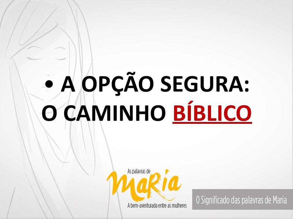 Disse Maria: Meu espírito se alegra em Deus o meu Salvador. Lucas 1.47