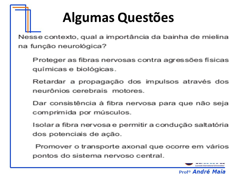 Profº André Maia Algumas Questões
