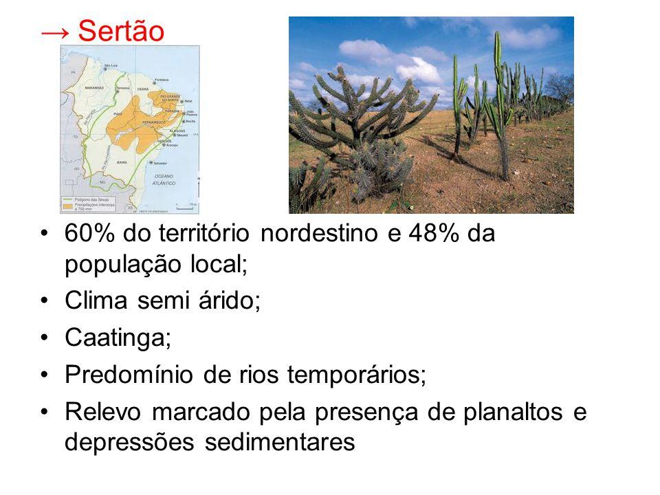 → Sertão 60% do território nordestino e 48% da população local; Clima semi árido; Caatinga; Predomínio de rios temporários; Relevo marcado pela presença de planaltos e depressões sedimentares