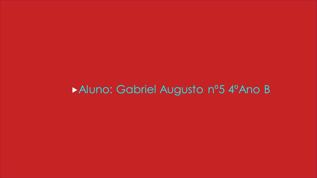 AAluno: Gabriel Augusto nº5 4ºAno B